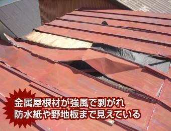 強風で剥がれた金属屋根