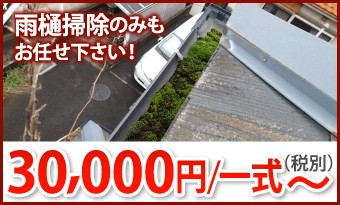 雨樋掃除30000円/一式~