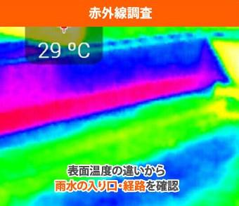 赤外線調査