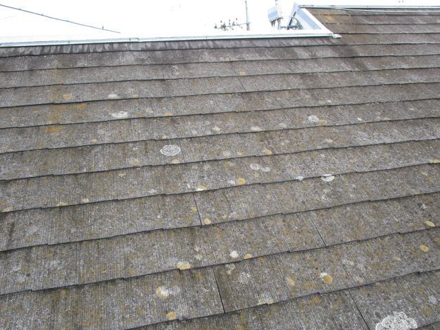 変換 ~ 飯能市 屋根カバー 外壁塗装 現地調査 (2)