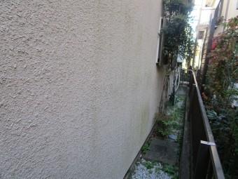 入間市東藤沢 屋根カバー工事 外壁塗装 現地調査 外壁の苔、汚れ