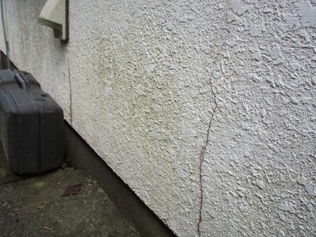 変換 ~ 飯能市 屋根カバー 外壁塗装 現地調査 (13)