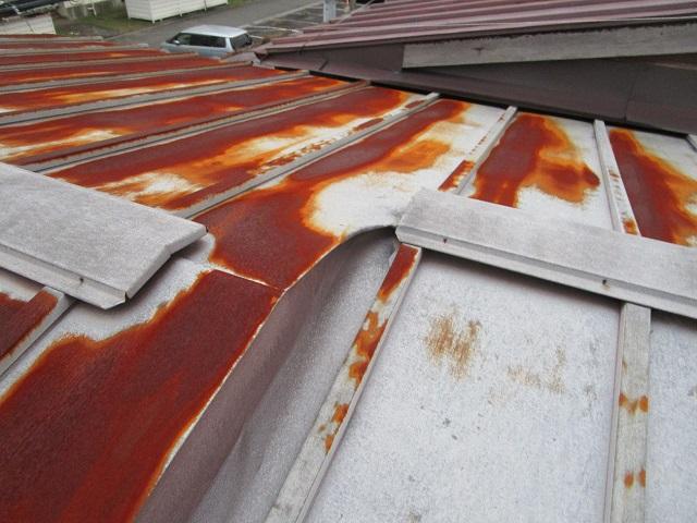 既存屋根 瓦棒屋根