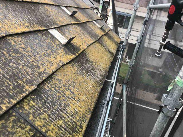 所沢市 東所沢 屋根・外壁洗浄作業 屋根のカビや苔
