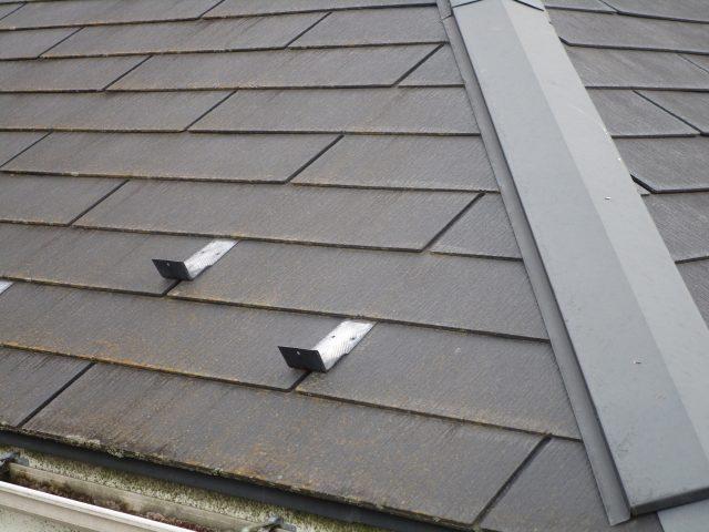 所沢市 北秋津 屋根カバー、外壁塗装 現地調査 カビや汚れ