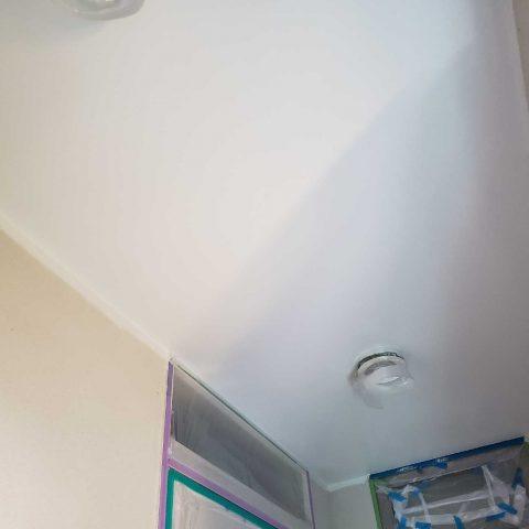 所沢市若狭 屋根・外壁塗装 付帯部塗装 軒天 (5)