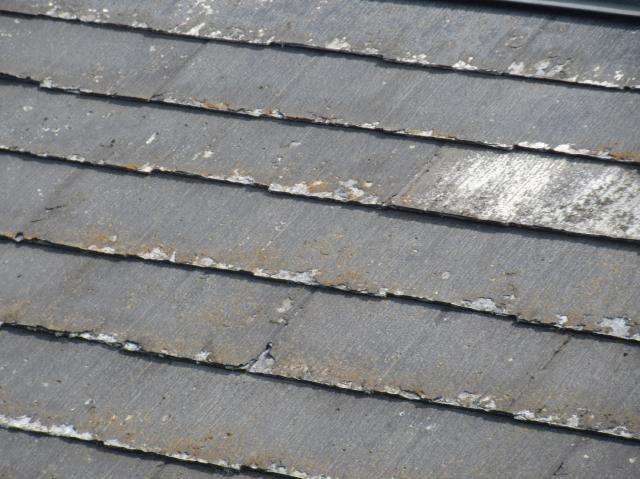 変換 ~ 入間市 屋根カバー 外壁塗装 現地調査 (1)