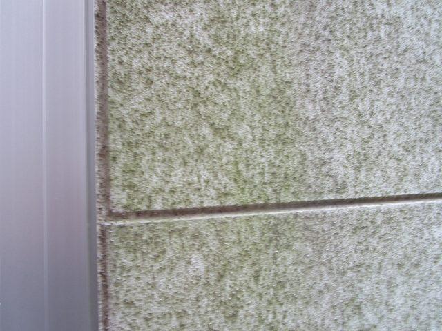 所沢市 北秋津 屋根リフォーム 外壁塗装工事 現場調査 (50)