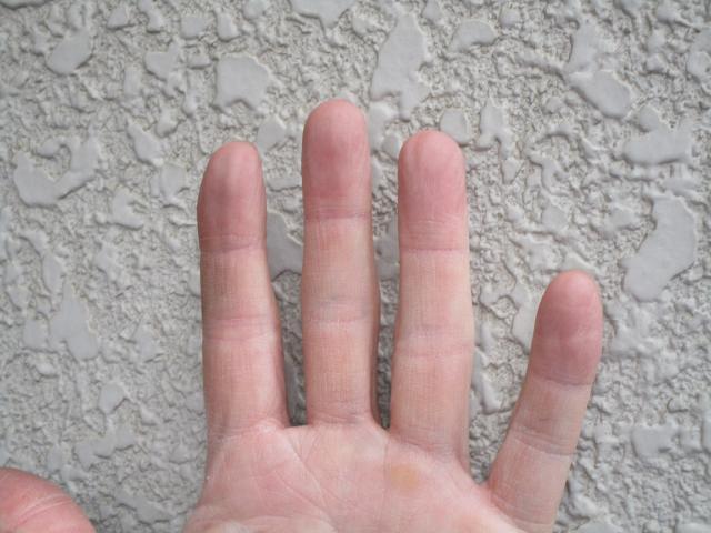 変換 ~ 飯能市 屋根カバー 外壁塗装 現地調査 (20)
