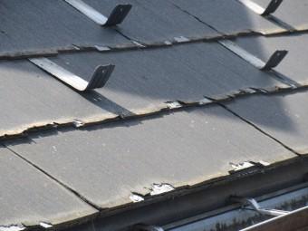 所沢市 東所沢 現地調査 外壁の苔汚れ スレート屋根の破損を確認3
