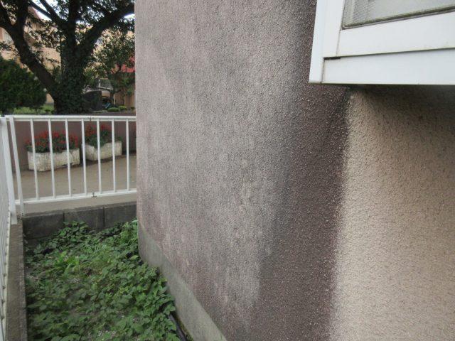 入間市久保稲荷 現場調査 外壁
