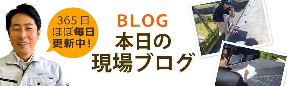所沢市、入間市、狭山市やその周辺エリア、その他地域のブログ