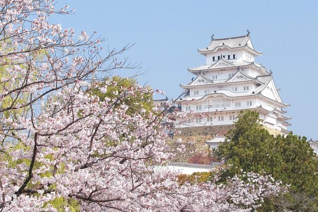 コラム 歴史的建造物 姫路城