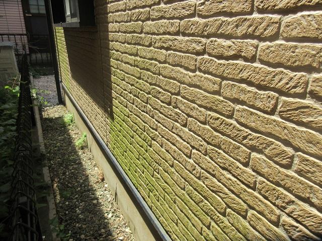 所沢市 東所沢 現地調査 外壁の苔汚れを確認4