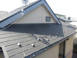 所沢市 東所沢 現地調査 外壁の苔汚れ スレート屋根の破損を確認2
