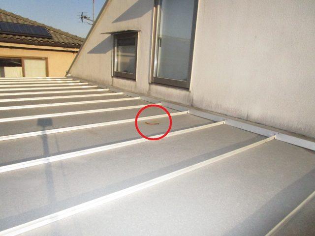所沢市若狭 屋根・外壁塗装 ベランダ工事 現地調査 (2)